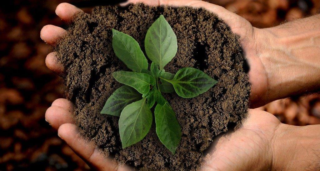 Wir praktizieren Nachhaltigkeit